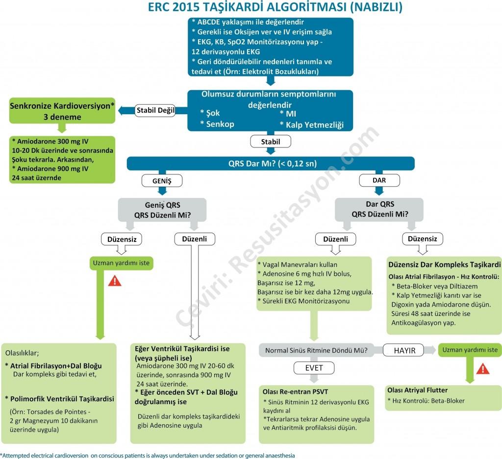 2015 ERC Tasikardi Algoritmasi