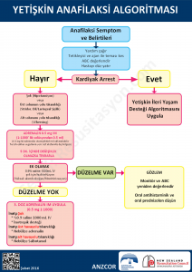 ANZCOR 2016 Yetişkin anafilaksi algoritması Türkçe
