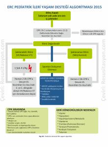 ERC-2015-Pediatrik-Ileri-Yasam-Destegi-Algoritmi
